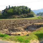 えっちゃんの田んぼに行ってきました。